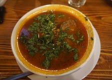 Sopa georgiana de la carne de vaca de Kharcho fotografía de archivo libre de regalías