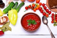 Sopa gruesa del gazpacho del tomate y de las verduras Fotos de archivo libres de regalías