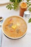 Sopa húngara da carne de porco Fotografia de Stock