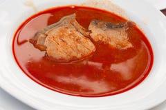 Sopa húngara, tradicional de los pescados Imagenes de archivo