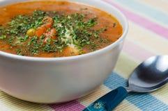Sopa hecha en casa Fotografía de archivo libre de regalías