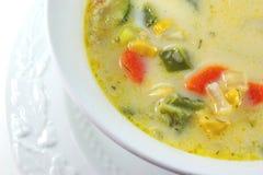 Sopa hecha en casa fotos de archivo