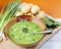 Sopa hecha en casa de la patata y de la espinaca Imágenes de archivo libres de regalías