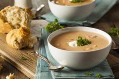Sopa hecha en casa de la sopa de mariscos de la langosta foto de archivo libre de regalías