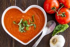 Sopa hecha en casa fresca del tomate imagen de archivo libre de regalías