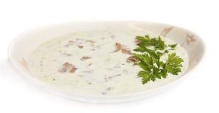 Sopa hecha puré Fotos de archivo