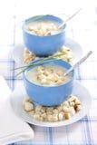 Sopa hecha puré cebolla Fotografía de archivo libre de regalías