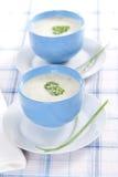 Sopa hecha puré cebolla foto de archivo