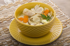 Sopa italiana com massa da galinha e do cogumelo Imagem de Stock