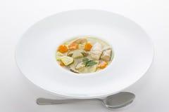 Sopa italiana com massa da galinha e do cogumelo Foto de Stock