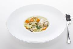 Sopa italiana com massa da galinha e do cogumelo Fotografia de Stock