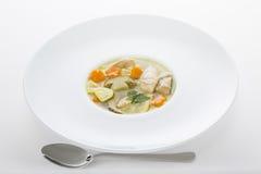 Sopa italiana com massa da galinha e do cogumelo Fotos de Stock Royalty Free