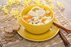 Sopa italiana com massa da galinha e do cogumelo Fotos de Stock