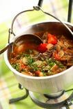 A sopa a mais densa com carne fotografia de stock