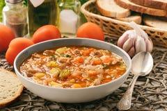 Sopa nutriente com carne, arroz e vegetais - cozinha do uzbek do mastava imagens de stock