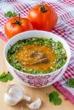 Sopa oriental del tomate Foto de archivo libre de regalías
