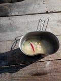 Sopa para la naturaleza Foto de archivo libre de regalías