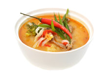 Sopa picante asiática com carne Imagem de Stock Royalty Free