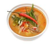 Sopa picante asiática com carne, fim acima Imagens de Stock Royalty Free