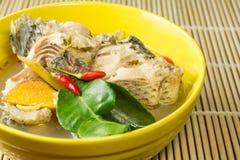 Sopa picante con los pescados (tomyum) Imagen de archivo