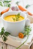 Sopa picante da cenoura Fotografia de Stock Royalty Free
