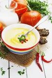 Sopa picante de la calabaza con pimienta de la crema y de chile Imagen de archivo libre de regalías