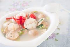 Sopa picante do estilo tailandês, Tom Yum imagem de stock
