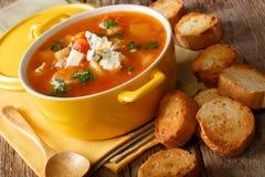 Sopa picante hecha en casa del búfalo con el pollo, las verduras y el ch azul Fotos de archivo libres de regalías