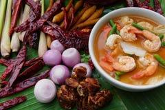 Sopa picante tailandesa com caril e camarão vermelhos foto de stock royalty free