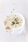 Sopa poner crema de verduras Fotos de archivo libres de regalías