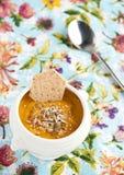 Sopa-puré del Veggie Fotos de archivo libres de regalías