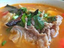 Sopa quente e picante com reforços de carne de porco Foto de Stock