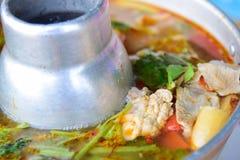 Sopa quente e picante com reforços de carne de porco Imagem de Stock Royalty Free