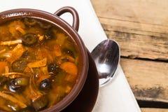 Sopa rusa tradicional de la carne con los pepinos salados Foto de archivo libre de regalías