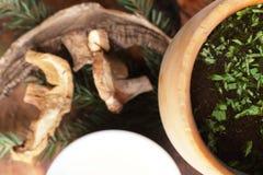 Sopa saboroso no fundo brilhante Foto de Stock Royalty Free