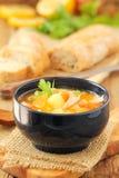 Sopa Salmon e vegetal Fotos de Stock Royalty Free