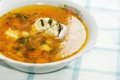 Sopa sana de los pescados foto de archivo libre de regalías