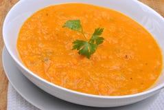 Sopa saudável da nata da polpa de butternut Imagens de Stock