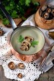 Sopa saudável do creme do cogumelo com aipo e salsa em um fundo de madeira velho Estilo rústico Imagens de Stock Royalty Free