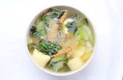Sopa tailandesa de la alga marina del estilo con Bean Curd, verdura mezclada, queso de soja en el cuenco blanco en el fondo blanc Fotografía de archivo libre de regalías