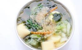Sopa tailandesa de la alga marina del estilo con Bean Curd, verdura mezclada, queso de soja en el cuenco blanco en el fondo blanc Foto de archivo libre de regalías