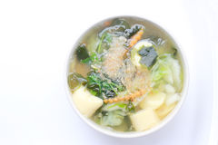 Sopa tailandesa de la alga marina del estilo con Bean Curd, verdura mezclada, queso de soja en el cuenco blanco en el fondo blanc Imagen de archivo libre de regalías
