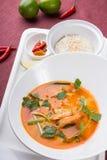 Sopa tailandesa del camarón de tom yum fotografía de archivo