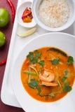 Sopa tailandesa do camarão de tom yum fotografia de stock