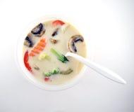 Sopa tailandesa do gai do kha de tom imagem de stock