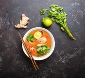 Sopa tailandesa Tom Yum imagens de stock royalty free