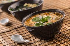 Sopa tailandesa tradicional Tom Yum com leite do camarão e de coco fotos de stock royalty free
