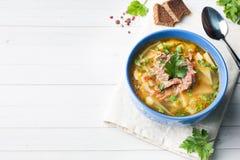 Sopa tradicional da couve do russo com carne e as ervas frescas em uma tabela clara Copie o espaço fotos de stock