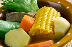 Sopa tradicional mexicana Imagen de archivo