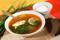 Sopa tradicional rusa - solyanka Fotografía de archivo